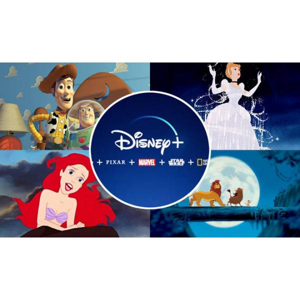 Disney Plus | 1-month Shared Account